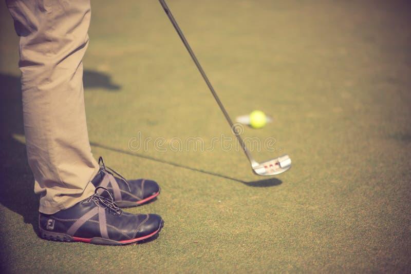 Golfspelare p? den s?ttande gr?splanen som sl?r bollen in i ett h?l royaltyfri foto