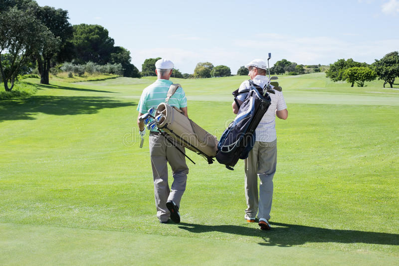Golfspelervrienden die houdend hun golfzakken lopen stock foto's