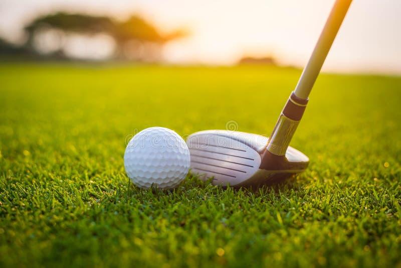 Golfspieler setzt Golfball auf gr?nes Gras am Golfplatz, damit die Ausbildung mit Unsch?rfehintergrund a durchl?chert lizenzfreie stockbilder