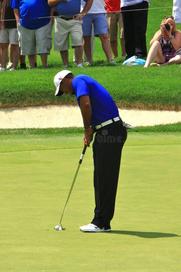 Golfspieler Tiger Woods stockbild