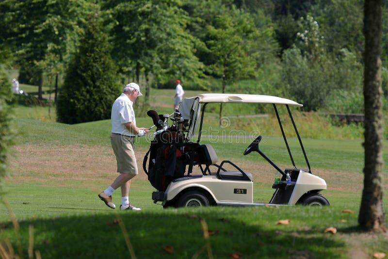 Golfspieler und Golfwagen lizenzfreie stockfotos