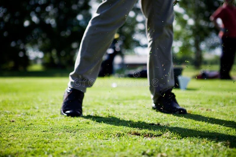 golfswing royaltyfria foton