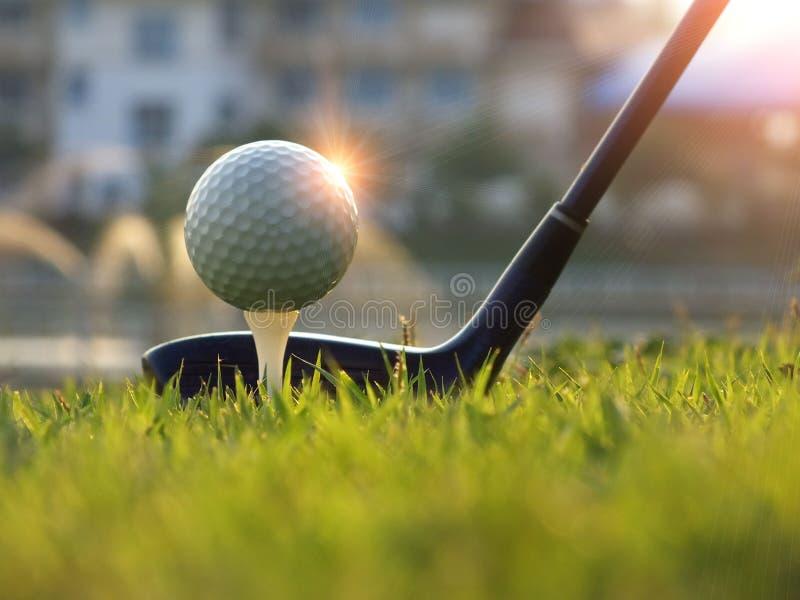 Golfutrustning i en gr?n gr?smatta arkivbild