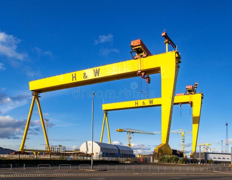 goliath samson Διάσημοι γερανοί ναυπηγείων στο Μπέλφαστ στοκ φωτογραφία