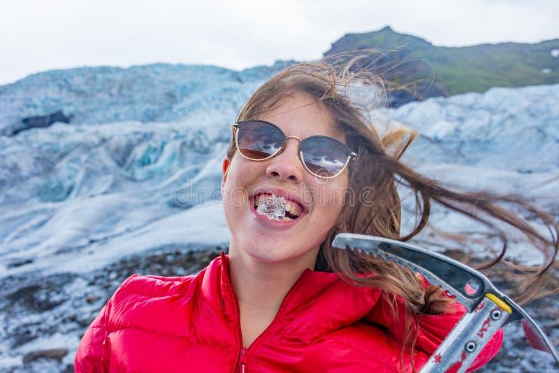 Golondrina de mar ártica en el puerto deportivo del fiordo de Borgarfjördur Eystri, Islandia imagen de archivo libre de regalías