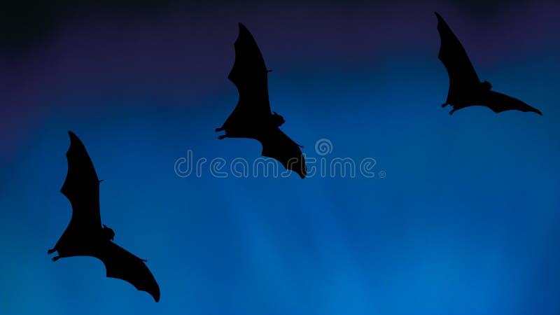 Golpeie as silhuetas que voam no céu - festival de Dia das Bruxas ilustração stock