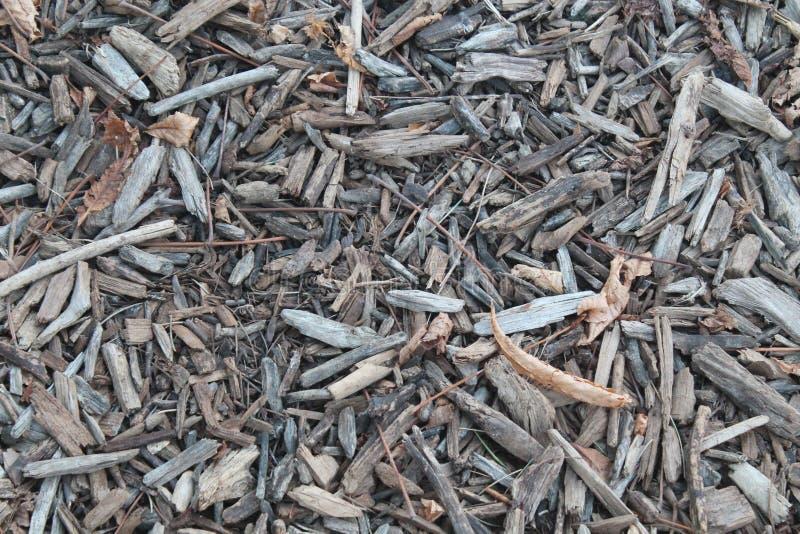Golv med säng av stycken av trä och sidor royaltyfria bilder