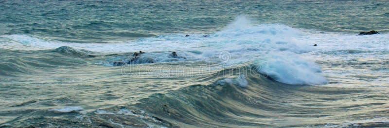 golven Corsica royalty-vrije stock foto