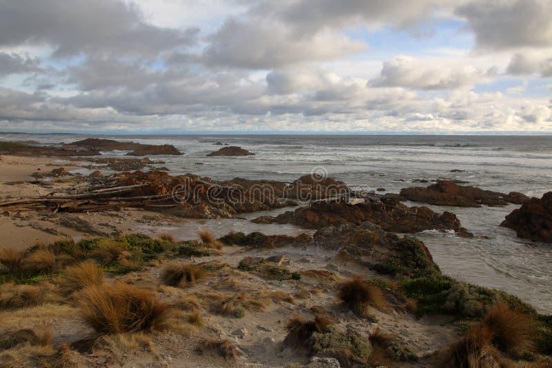 Golven die kleurrijke oceaanrotsen verpletteren bij schemer, op afgelegen Arthur Pieman Conservation-gebied, de Westkust van Tasm stock fotografie