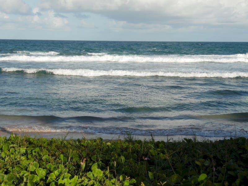 Golven die op Braziliaanse kust raken royalty-vrije stock afbeeldingen