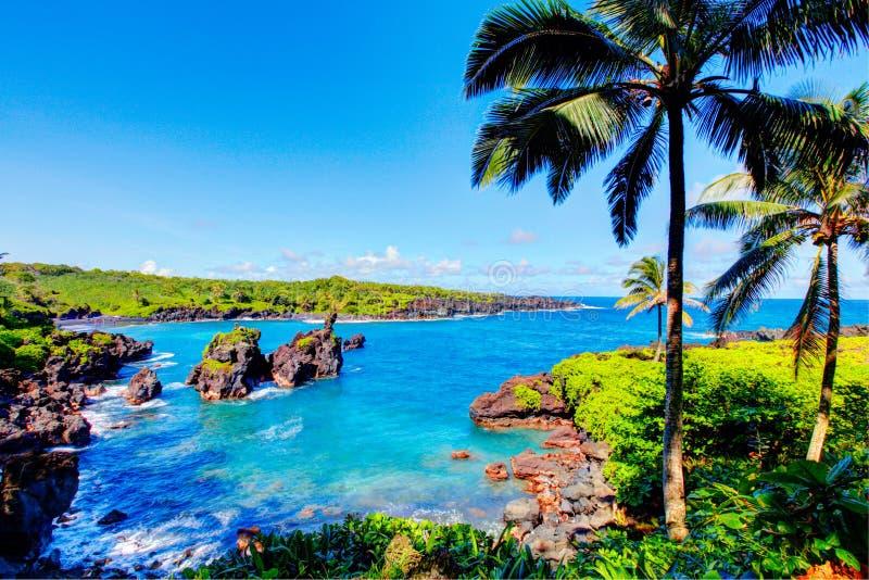 Golven die op de rotsen op een zonnige dag breken Maui, Hawaï stock afbeeldingen