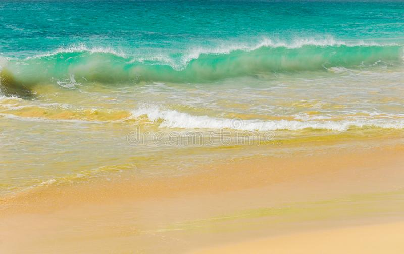 Golven van een tropische overzees stock afbeelding