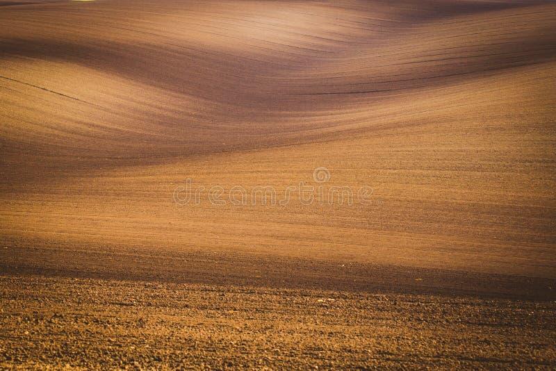 Golvende de herfstgebieden in Moravian Toscanië, Tsjechische Republiek stock afbeelding