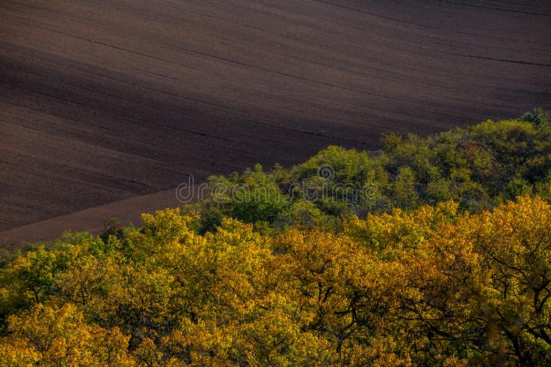 Golvende de herfstgebieden in Moravian Toscanië, Tsjechische Republiek stock fotografie