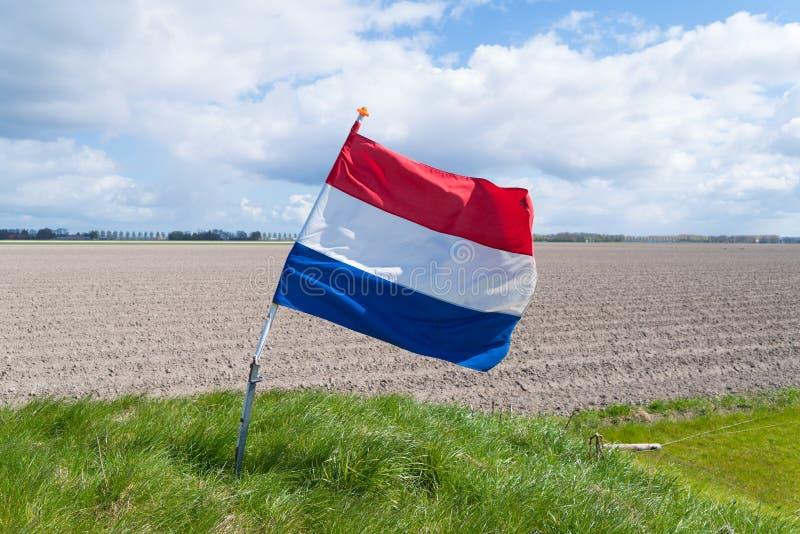 Golvende Nederlandse vlag stock foto's