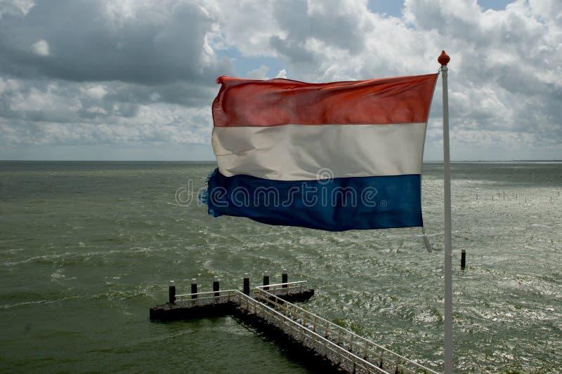 Golvende Nederlandse vlag stock fotografie