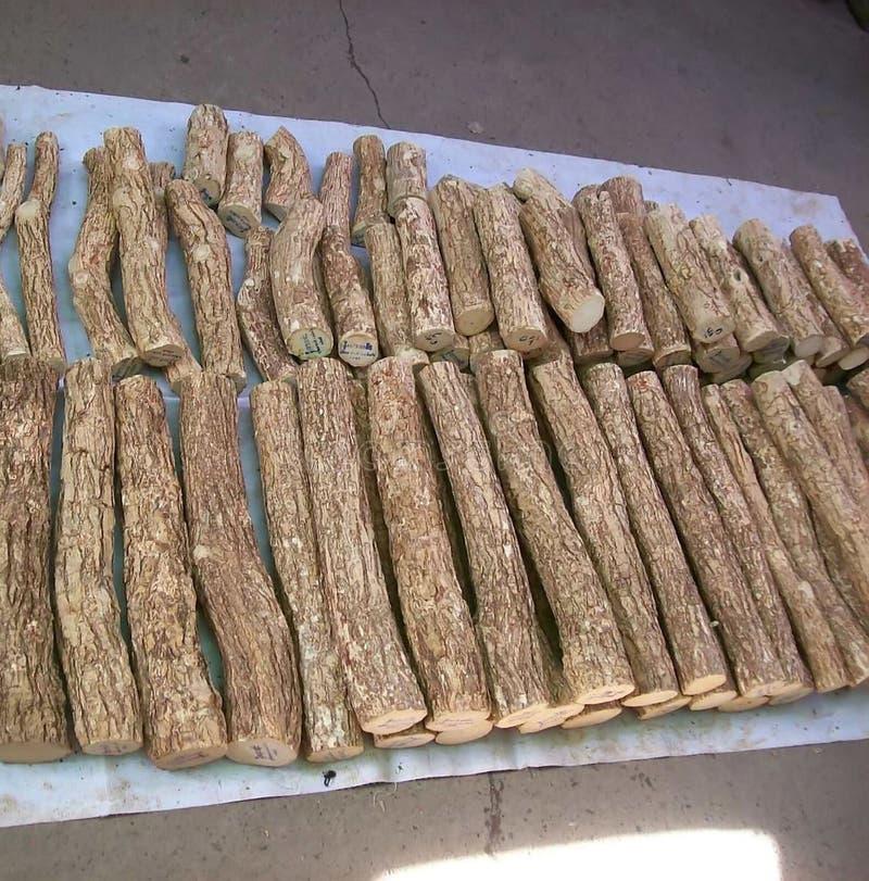 Goma del cosmético de Thanakha fotos de archivo libres de regalías