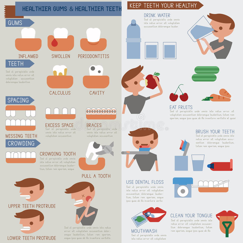 Gomas mais saudáveis e dentes mais saudáveis Infographic ilustração royalty free