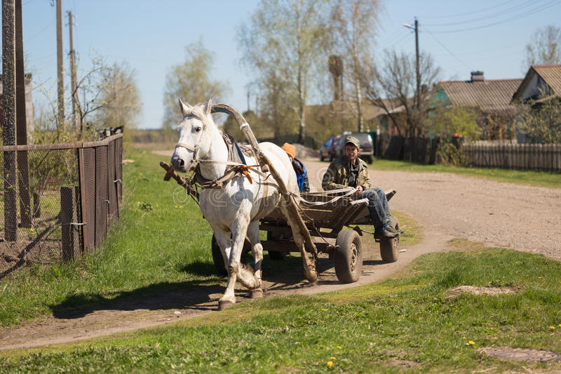 GOMEL, BELARUS - May 3, 2017: A cart with a horse rides around the Villehage. royalty free stock photo