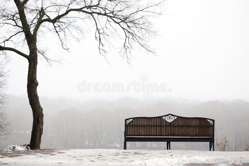 Gomel belarus um banco só em um parque nevoento imagem de stock