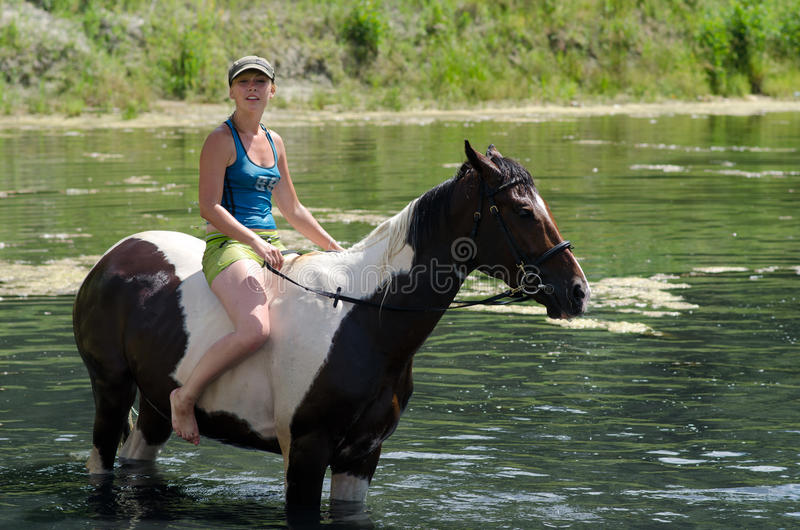 GOMEL, BIELORRÚSSIA - 24 DE JUNHO DE 2013: Banhando cavalos no lago fotografia de stock royalty free