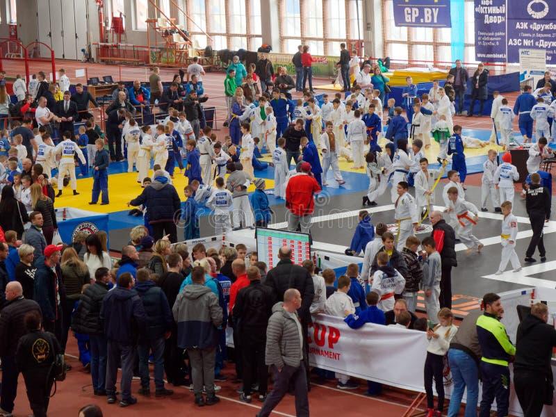 GOMEL, BIELORRUSIA - 23 de marzo de 2019: II torneo internacional de Pride Cup en judo foto de archivo
