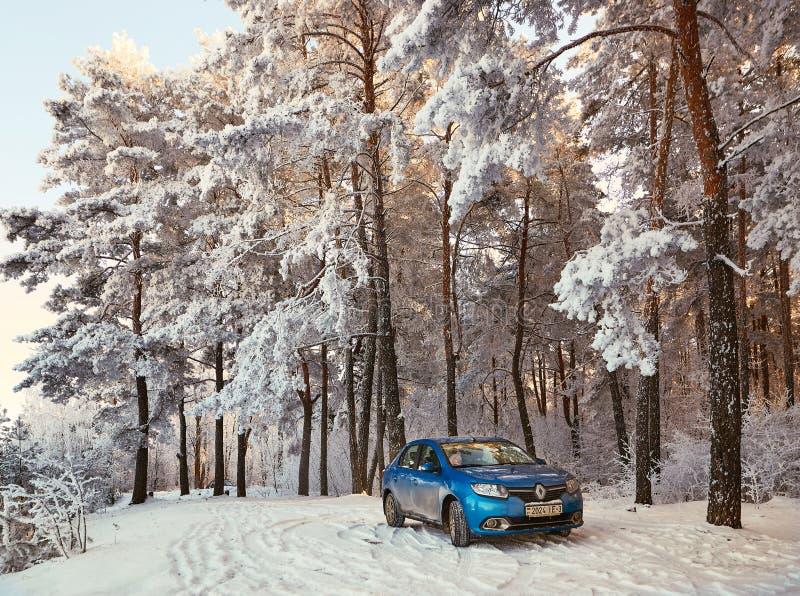 Gomel Vitryssland - JANUARI 24, 2018: en blå bil RENAULT LOGAN som parkeras i vinterskogen arkivbilder