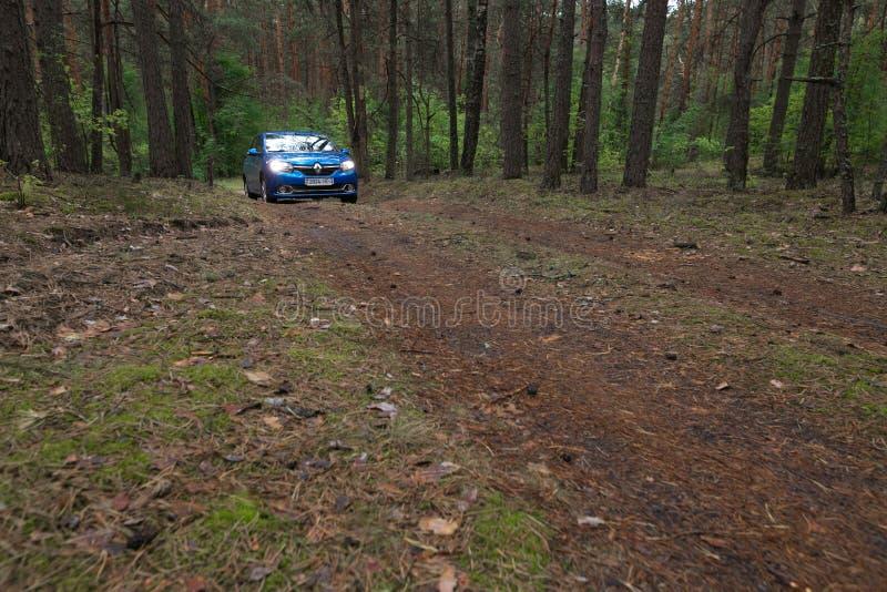 GOMEL VITRYSSLAND - 24 MAJ 2017: RENO LOGAN slösar bilen som parkeras i en mörk pinjeskog fotografering för bildbyråer