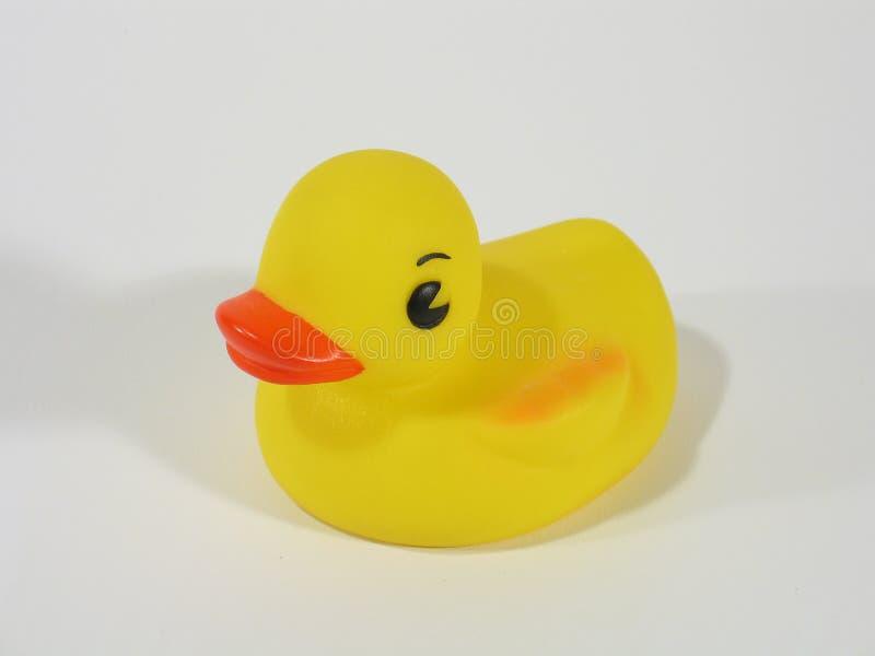Gomma Ducky
