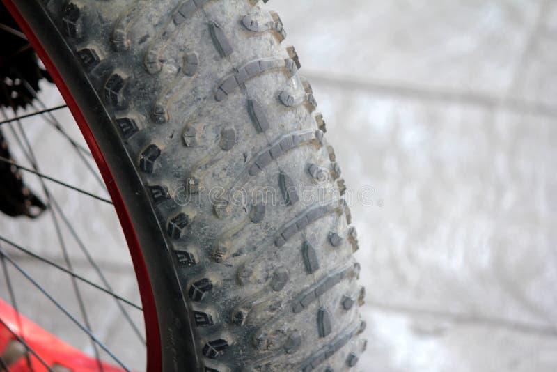 Gomme della bicicletta immagini stock