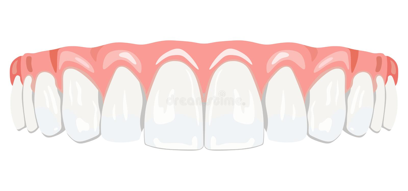 Gommes de dents illustration stock