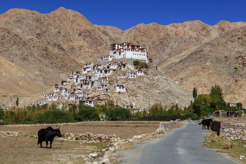 Gompa - monastero buddista tibetano in Ladakh fotografia stock libera da diritti