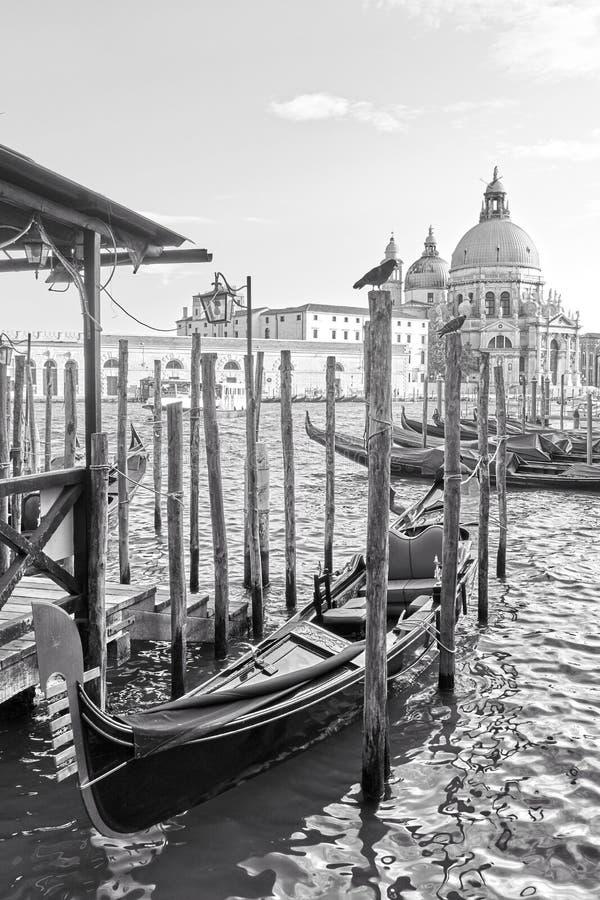 Gondol- och Santa Maria della Salute kyrka i Venedig arkivfoton