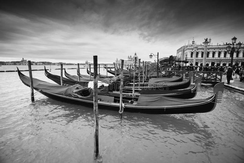 Gondolas in front of Riva degli Schiavoni bw stock photos