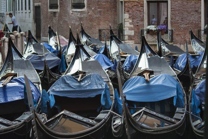 Gondole in Venedig stockbilder