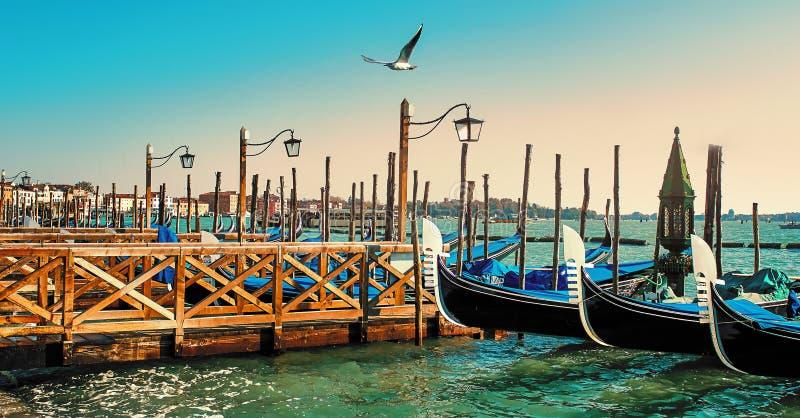Gondoler som anslutas på pir piazza San Marco i Venedig, Italien på solnedgången arkivfoto