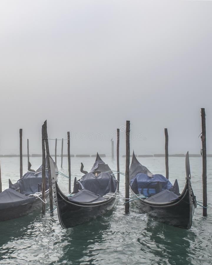 Gondoler som parkeras på kusten, Venedig, Italien arkivbild