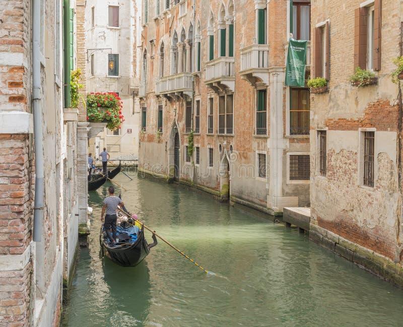 Download Gondolero Veneciano Que Lleva En Batea La Góndola Con Verde Foto editorial - Imagen de mediterráneo, destinación: 64210201