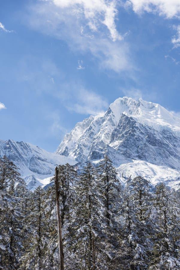 Gongga snow mountain royalty free stock images
