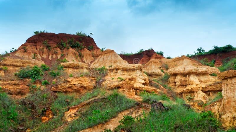 gongoni,西部Benga,印度红色土壤  免版税库存照片