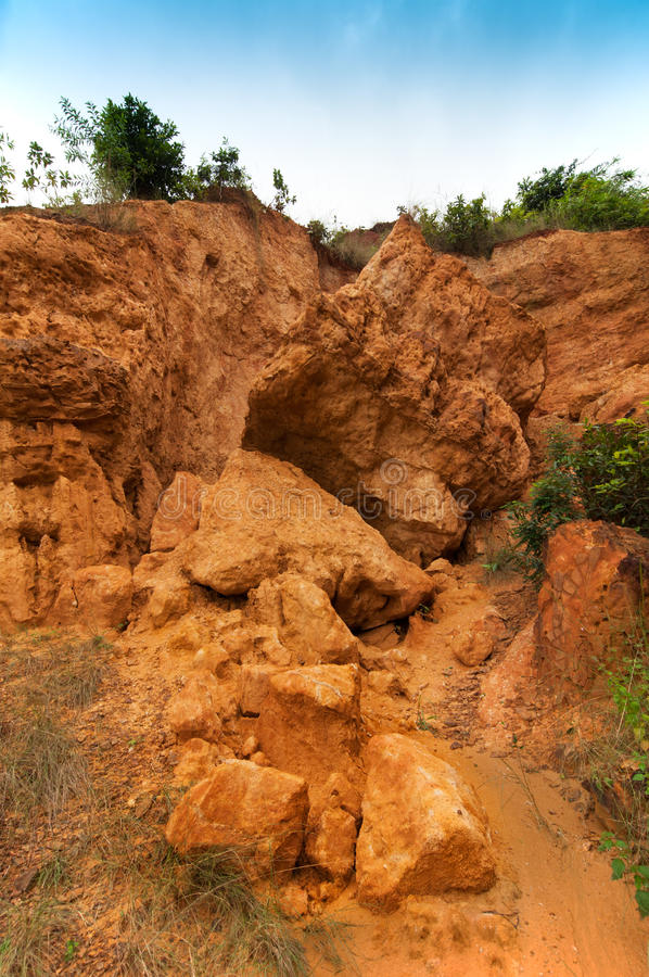 gongoni,西部Benga,印度红色土壤  免版税库存图片