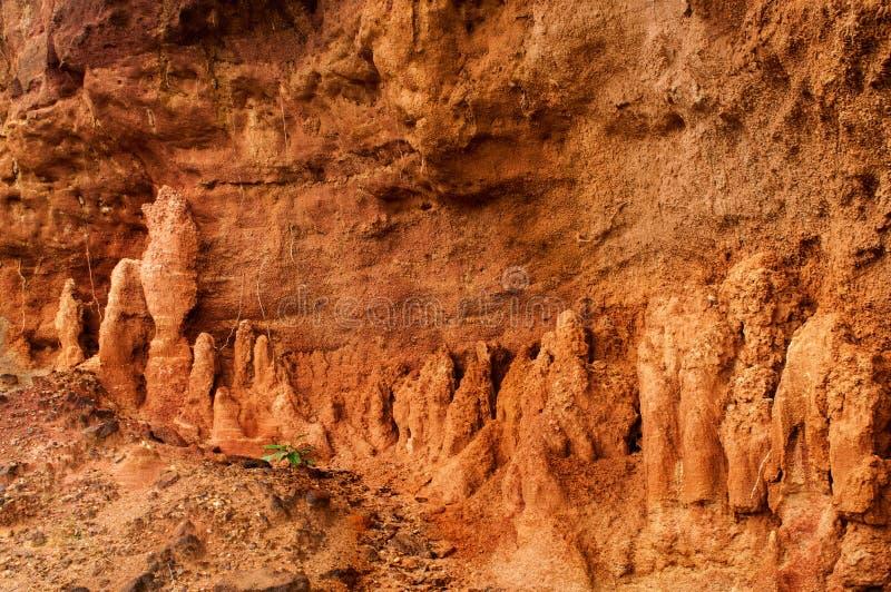 Gongoni, ущелье красной почвы, Индии стоковые изображения
