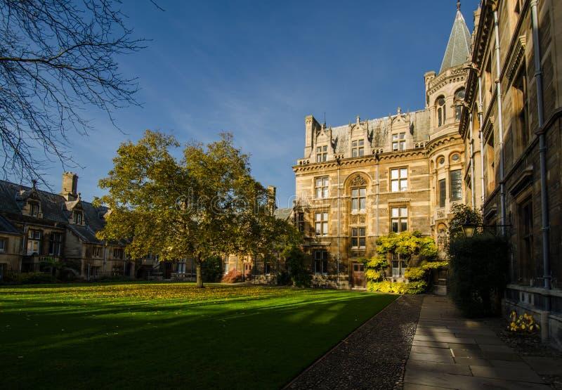 Gonville y universidad de Caius, Cambridge foto de archivo libre de regalías