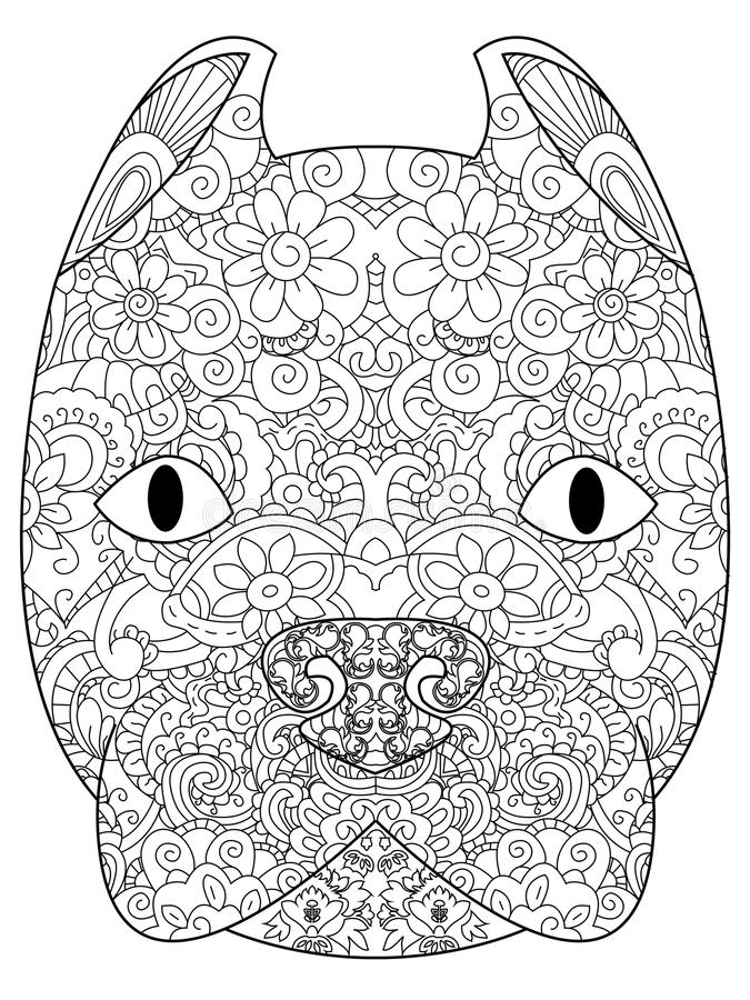 Good American Pit Bull Terrier head coloring vector for adults royalty free illustration