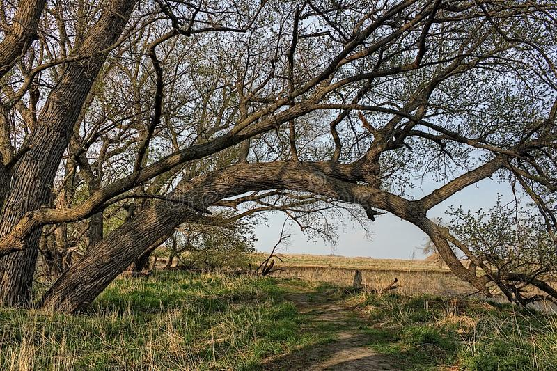 Good Earth State Park is an Urban State Park on the Edge of the Sioux Falls, South Dakota Metro Area.  royalty free stock photography