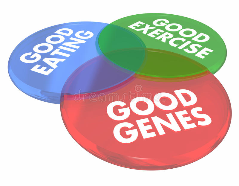 Good Genes Eating Living Long Life Health Venn Diagram 3d Illustration stock illustration