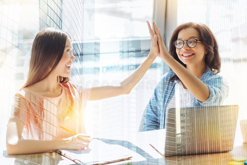 Happy nice colleagues giving each other high five royalty free stock images