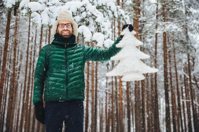 Good looking unshaven male in eyewear, wears warm winter clothes, holds white fir tree, has good mood, being in anticipation of Ne. W Year and Christmas, poses royalty free stock photography