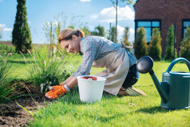 Good-looking woman leaning on her garden bed while planting new little flowers stock photos