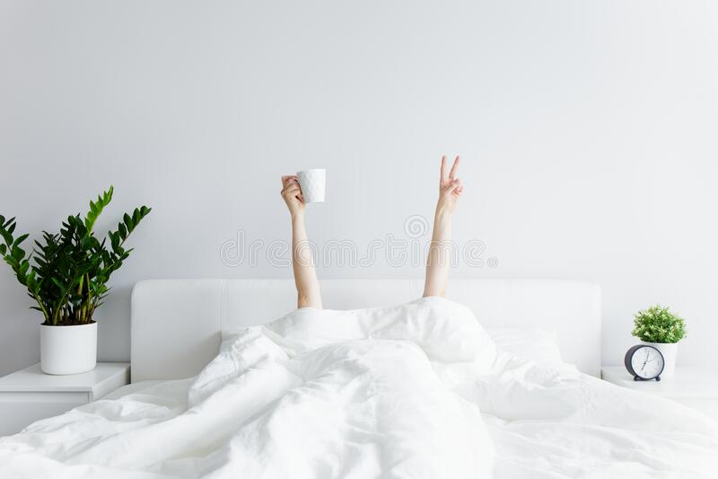 Good morning concept - female hands with coffee cup and victory sign sticking out from the blanket at home or hotel royalty free stock image